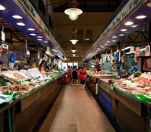 דג ברמונדי ישראלי ברשתות שיווק