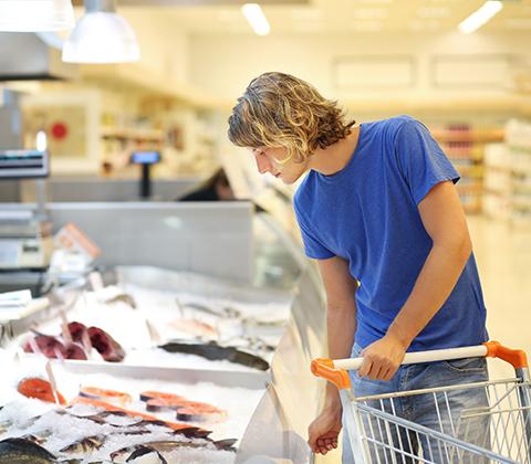 איפה קונים דג ברמונדי